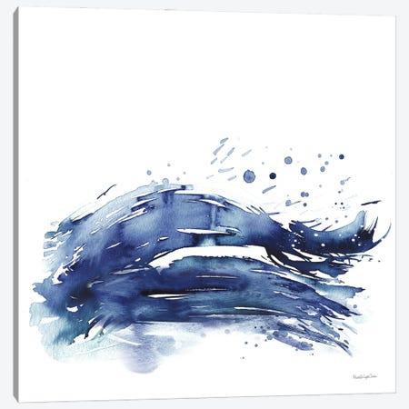 Coastal Splash III Canvas Print #MLC161} by Mercedes Lopez Charro Art Print