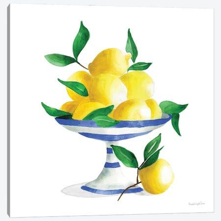 Spanish Lemons II Canvas Print #MLC185} by Mercedes Lopez Charro Canvas Art