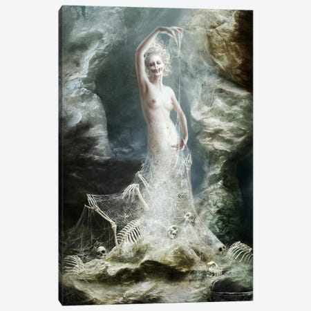 Toile Canvas Print #MLD43} by Melanie Delon Canvas Artwork