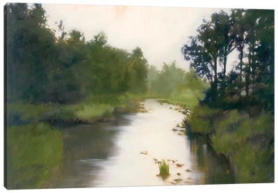 Foothill's Stream Canvas Art Print