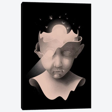 Insight Canvas Print #MLO16} by Mathiole Canvas Print