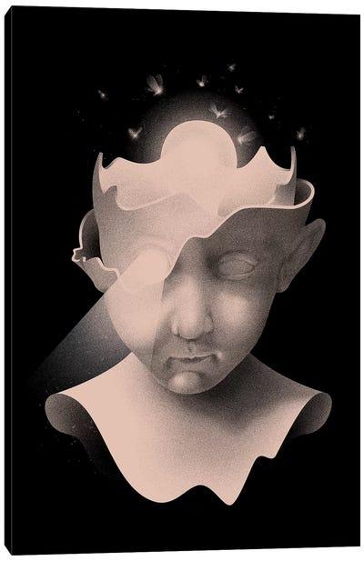 Insight Canvas Art Print