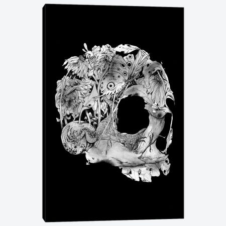Natureza Morta Canvas Print #MLO88} by Mathiole Canvas Art Print