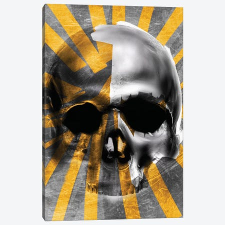 Golden Skull Canvas Print #MLT14} by Daniel Malta Canvas Art