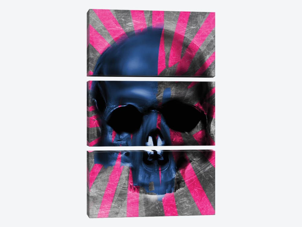 Pink Skull by Daniel Malta 3-piece Canvas Art Print