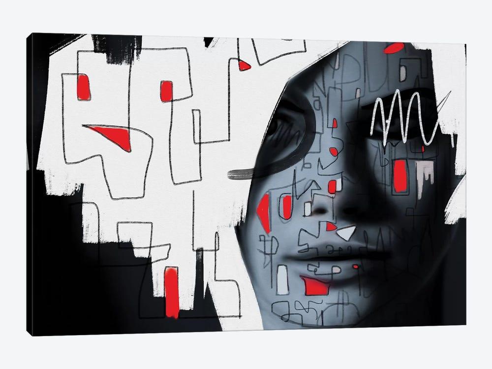 Labyrinth by Daniel Malta 1-piece Canvas Art