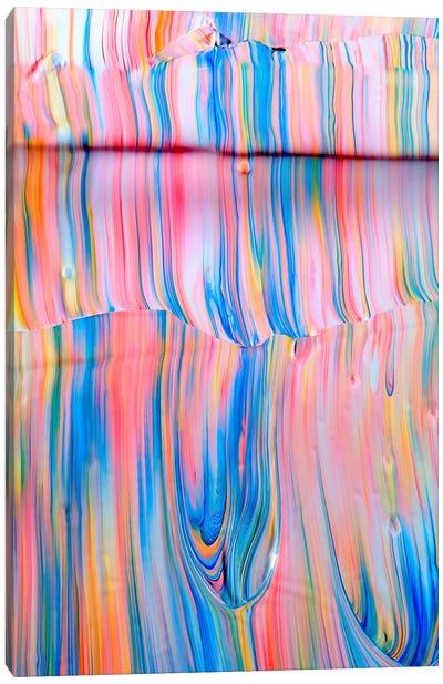Untitled 1 Canvas Art Print