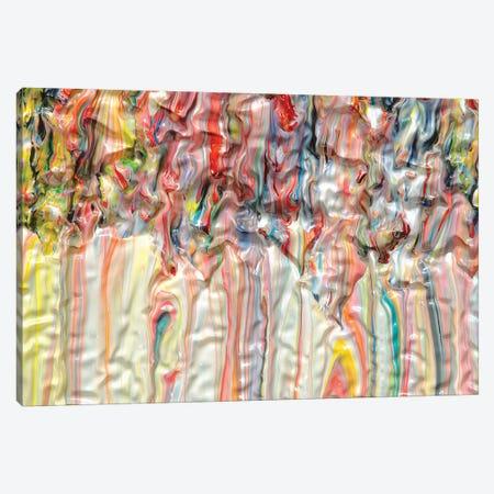 Untitled 38 Canvas Print #MLY38} by Mark Lovejoy Canvas Art