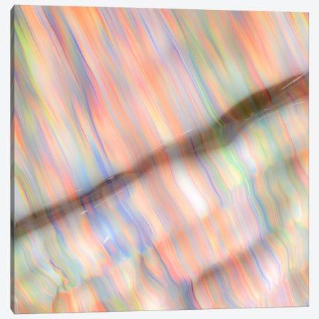 Untitled 39 Canvas Print #MLY39} by Mark Lovejoy Canvas Wall Art