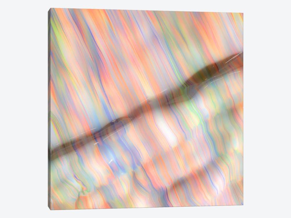 Untitled 39 by Mark Lovejoy 1-piece Canvas Print