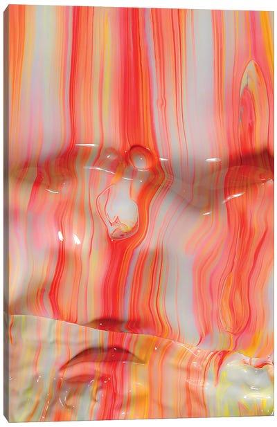 Untitled 3 Canvas Art Print