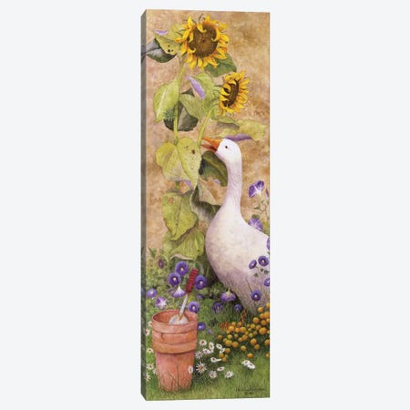 Garden March II Canvas Print #MMA10} by Marcia Matcham Canvas Art Print