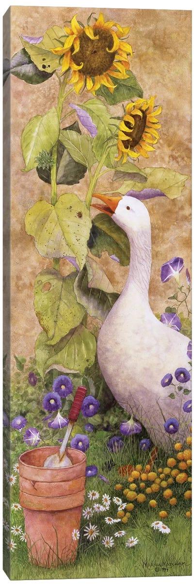 Garden March II Canvas Art Print