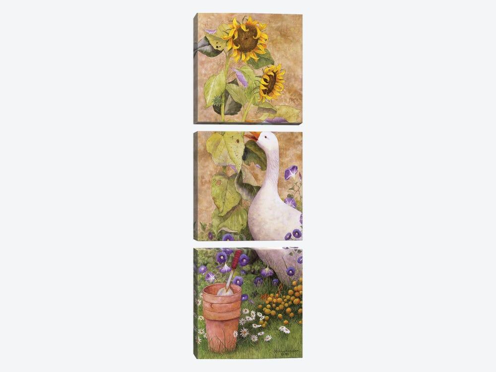 Garden March II by Marcia Matcham 3-piece Canvas Artwork