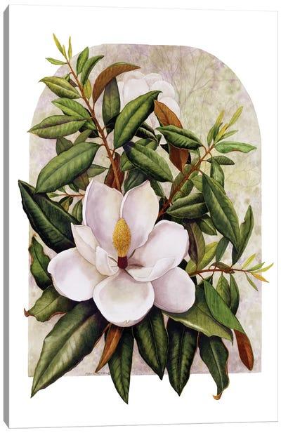 Magnolia Vignette Canvas Art Print