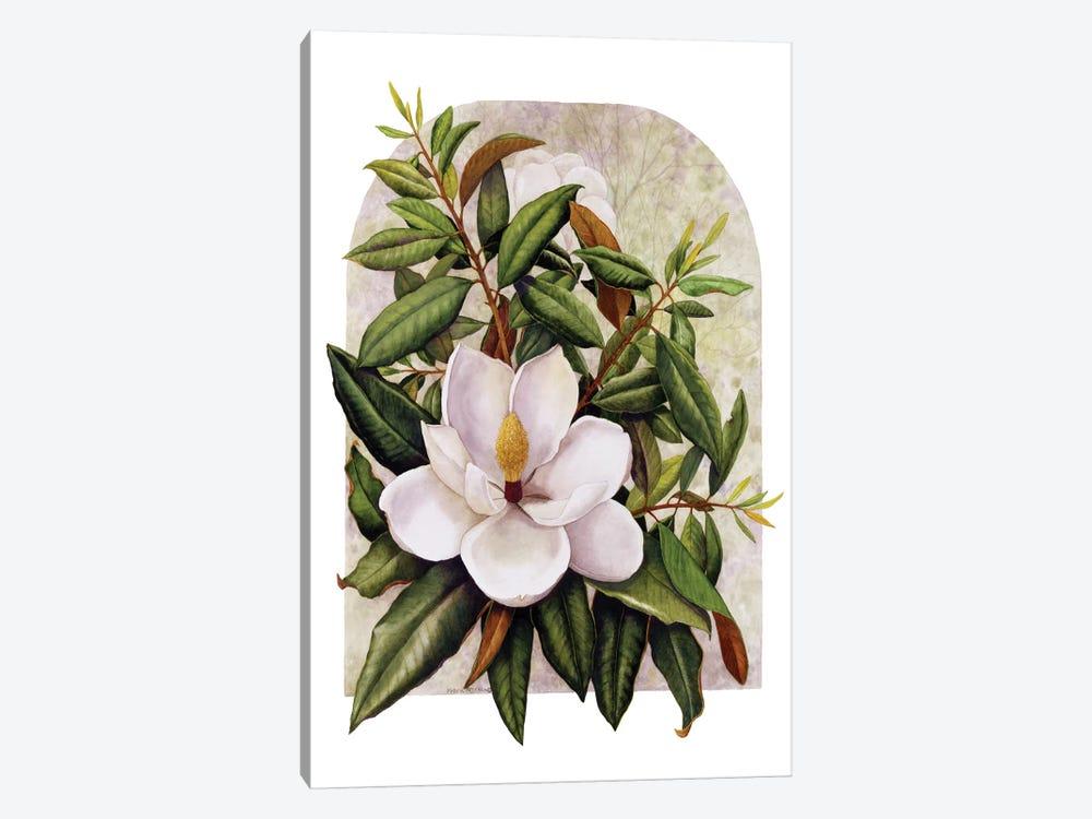 Magnolia Vignette by Marcia Matcham 1-piece Canvas Print