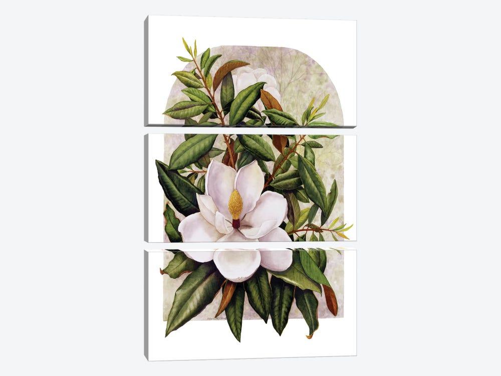 Magnolia Vignette by Marcia Matcham 3-piece Canvas Art Print