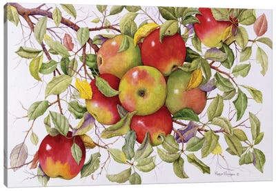 Apples Canvas Art Print