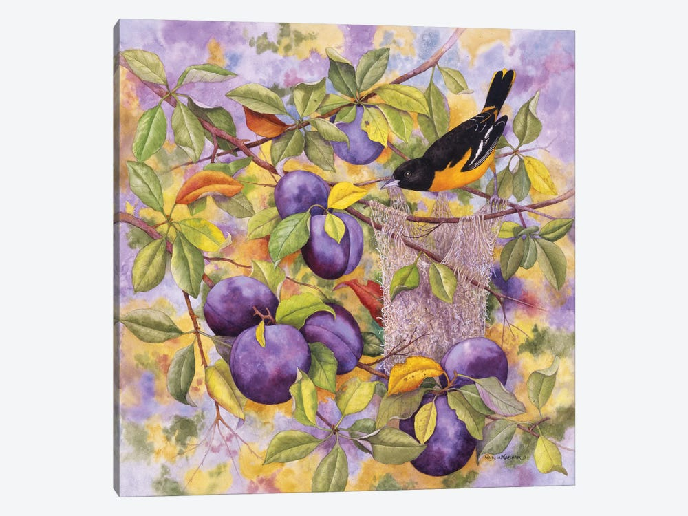 Oriole & Plums by Marcia Matcham 1-piece Art Print