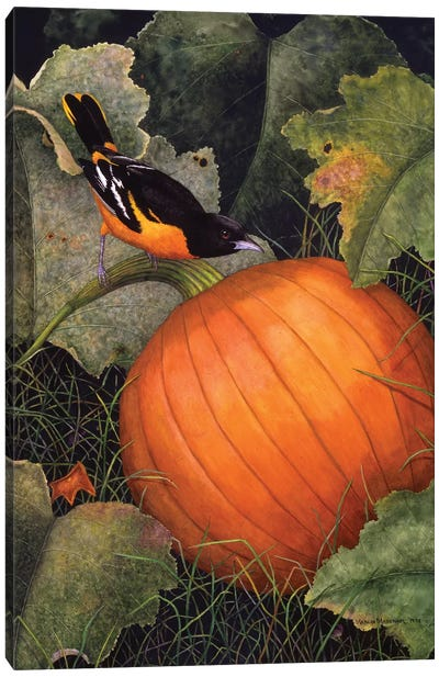 Oriole & Pumpkin Canvas Art Print