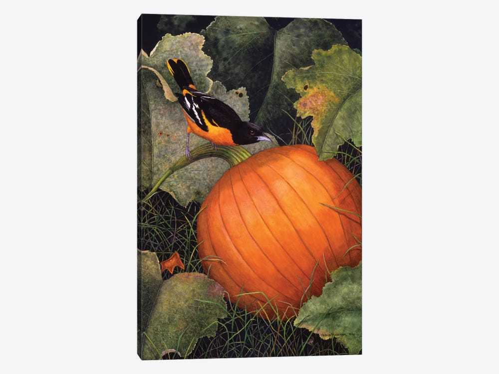 Oriole & Pumpkin by Marcia Matcham 1-piece Canvas Wall Art