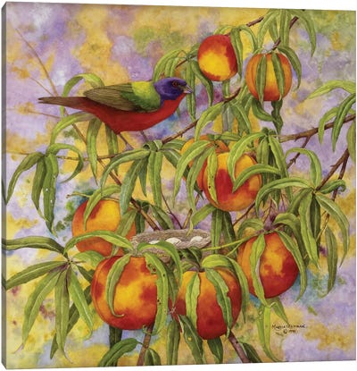 Painted Bunting & Peaches Canvas Art Print