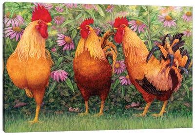 Roosters en Place I Canvas Art Print