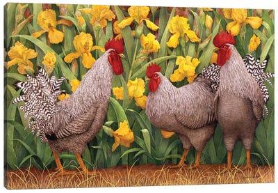 Roosters en Place II Canvas Art Print