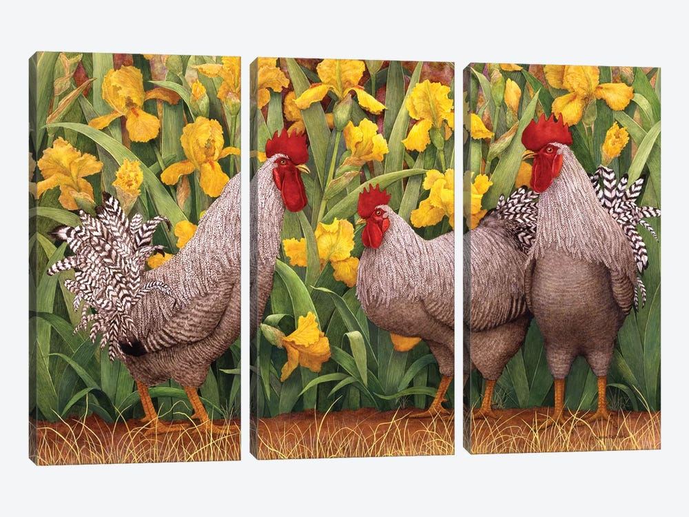 Roosters en Place II by Marcia Matcham 3-piece Canvas Print
