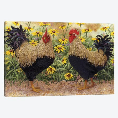 Roosters en Place III Canvas Print #MMA27} by Marcia Matcham Canvas Print
