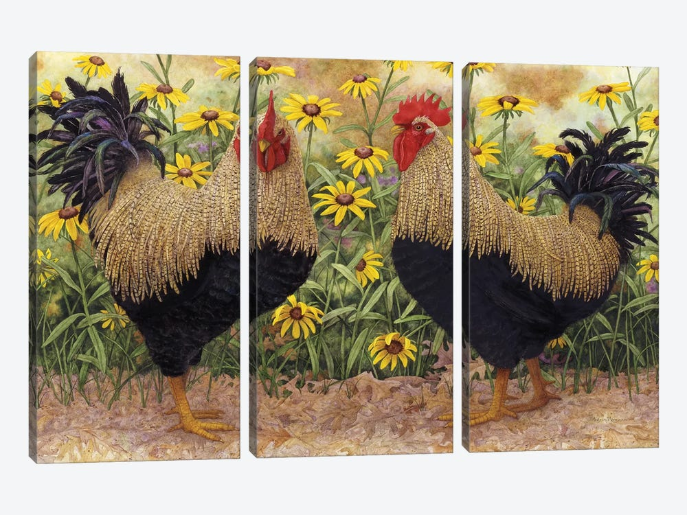 Roosters en Place III by Marcia Matcham 3-piece Canvas Art