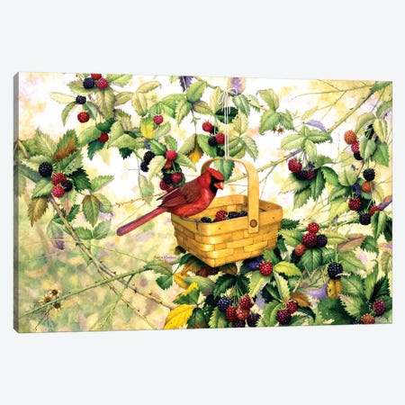 Berry Picker Canvas Print #MMA2} by Marcia Matcham Canvas Art