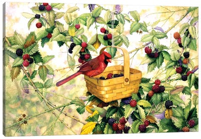 Berry Picker Canvas Art Print
