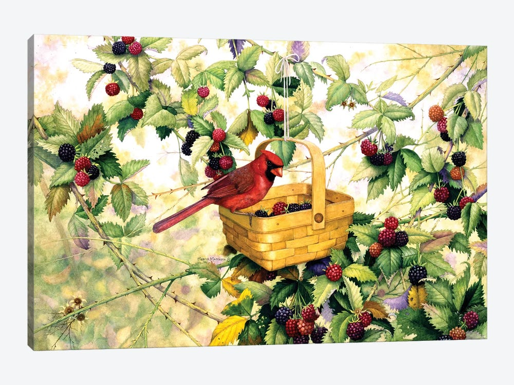 Berry Picker by Marcia Matcham 1-piece Canvas Art