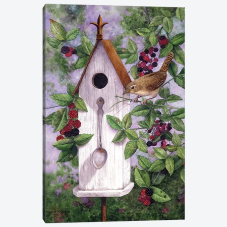 Wren House Canvas Print #MMA30} by Marcia Matcham Canvas Art Print