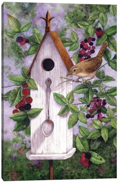 Wren House Canvas Art Print