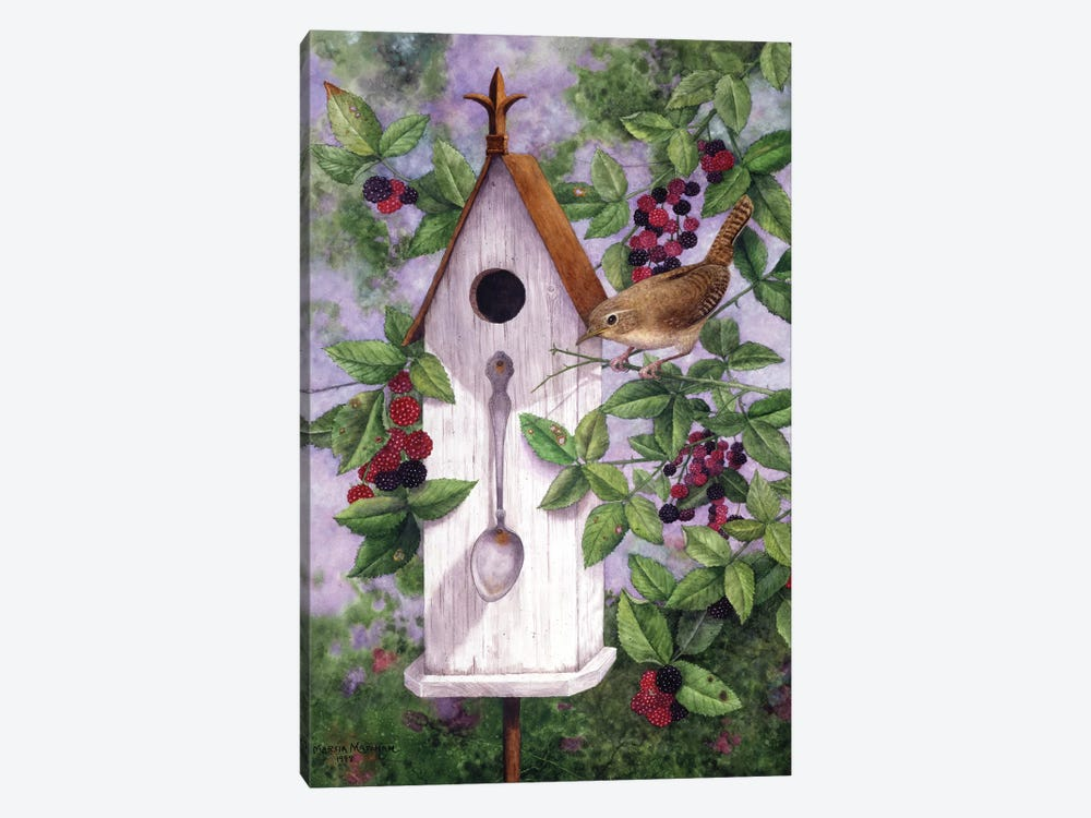 Wren House by Marcia Matcham 1-piece Canvas Art