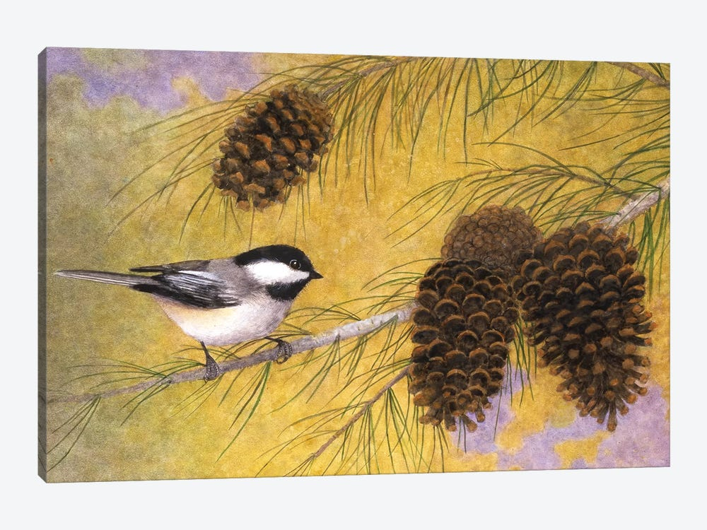 Chickadee In The Pines I by Marcia Matcham 1-piece Canvas Artwork