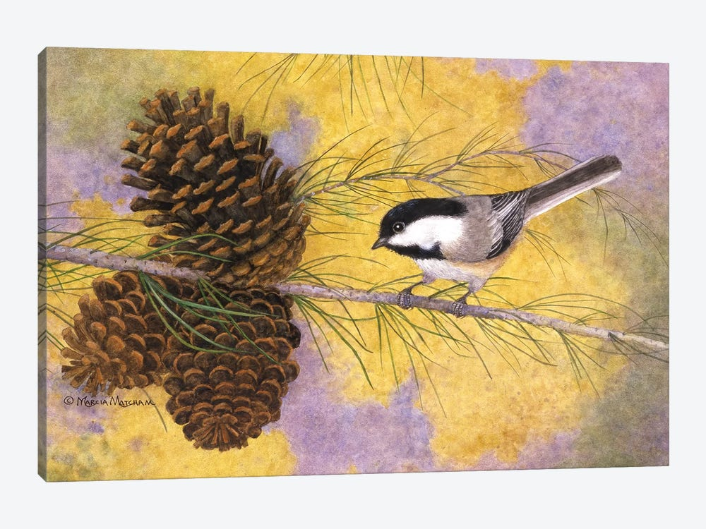 Chickadee In The Pines II by Marcia Matcham 1-piece Canvas Print