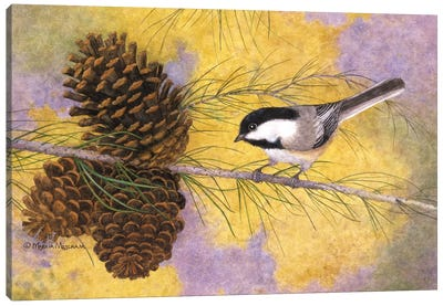 Chickadee In The Pines II Canvas Art Print