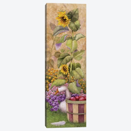 Garden March I Canvas Print #MMA9} by Marcia Matcham Canvas Art