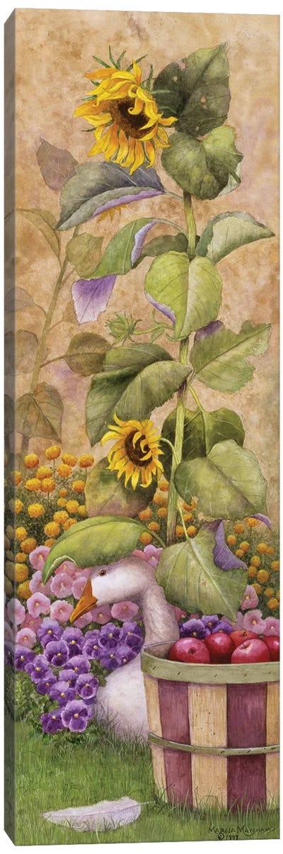 Garden March I Canvas Art Print