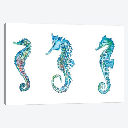 Seahorses Trio In Colorful Hippocampus Style Canvas Print #MMB283} by Markus & Martina Bleichner Canvas Art Print