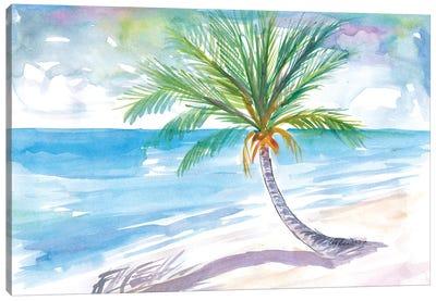 Big Palm For Dreaming Away On A White Caribbean Beach Canvas Art Print