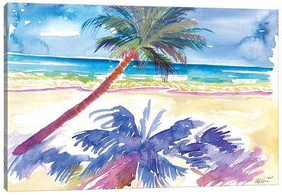 Palm Shadow Under Caribbean Sun With Beach And Sea Canvas Art Print