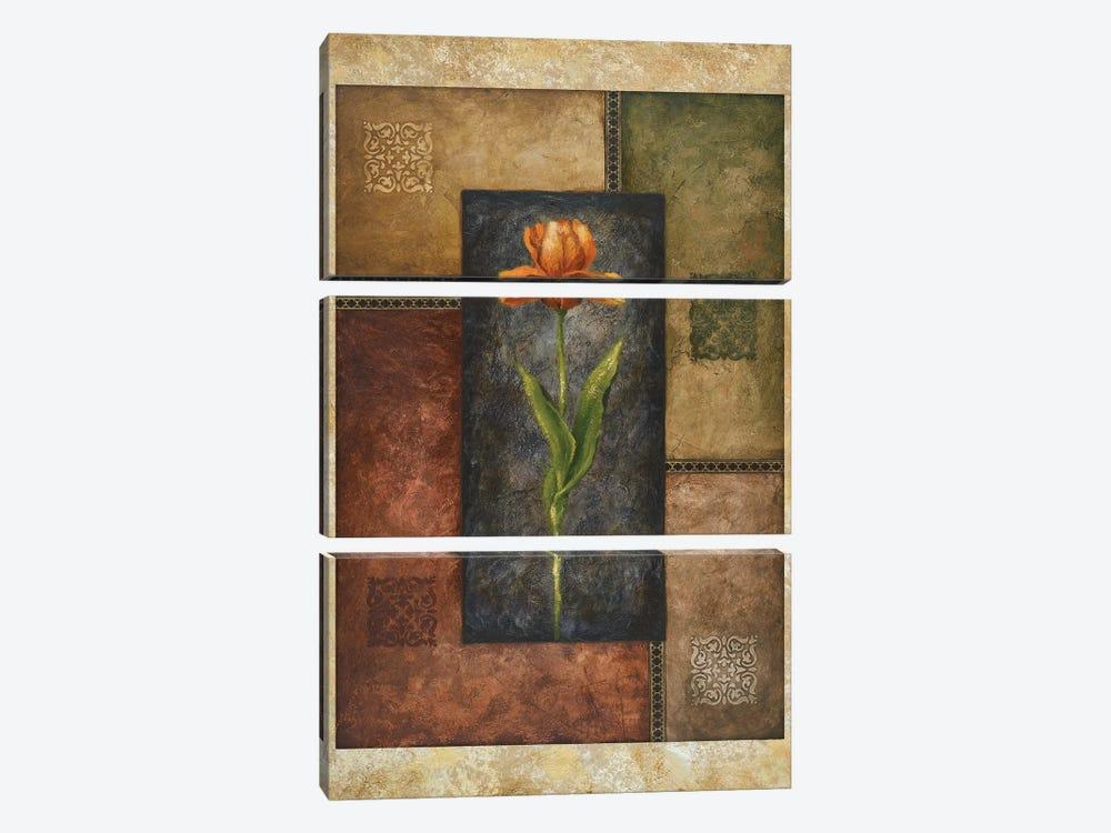 Orange Tulip by Michael Marcon 3-piece Canvas Art