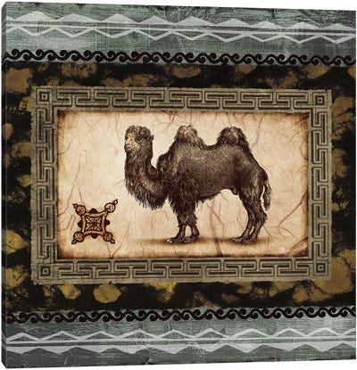 African Expression Square I Canvas Art Print