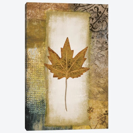 Single Leaf I Canvas Print #MMC125} by Michael Marcon Canvas Art