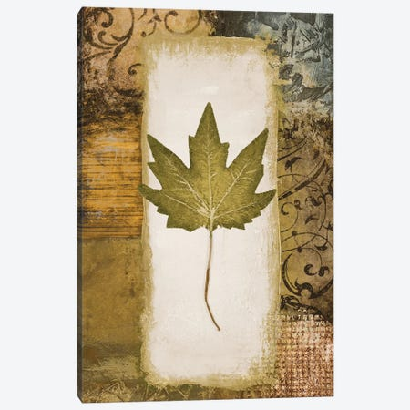 Single Leaf II Canvas Print #MMC126} by Michael Marcon Canvas Wall Art