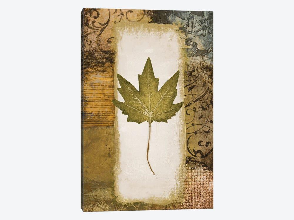 Single Leaf II by Michael Marcon 1-piece Canvas Artwork